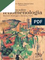 Ensaios sobre fenomenologia - Husserl, Heidegger e Merleau-Ponty - Antonio Balbino Marçal Lima