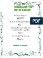 Sanidad Vegetal Bacterias Juan