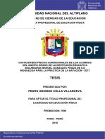 Colla_Villanueva_Pedro_Abundio