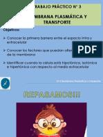 Presentacion-TP-3-2020