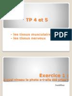 TP4-5 muscles - nerfs