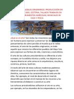 ARTE DE LOS PUEBLOS ORIGINARIOS