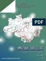 Amazonias Brasileiras Situacoes Locais e