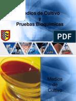Medios de Cultivo y Pruebas Bioquímicas