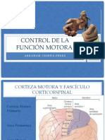 Control de la funcion motora