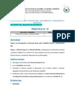FICHA DE PRÁCTICA N° 12