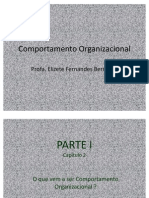 Comportamento Organizacional - Capítulo 2
