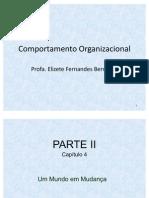 Comportamento Organizacional - Capítulo 4