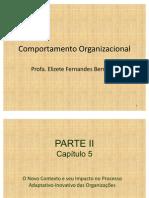 Comportamento Organizacional - Capítulo 5