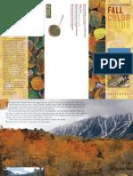 Eastern Sierra Fall Color Guide