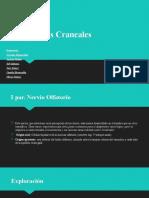 Pares Craneales COMPLETO