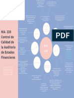 NIA 220 Mapa Conceptual