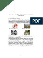 URMĂRIREA COMPORTĂRII COSTRUCŢIILOR HIDROTEHNICE PRIN METODE CLASICE