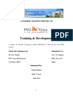 ING T & D summer training report