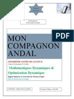 MON COMPAGNON ANDAL maths dynamiques et optimisation dynamique 2021-1