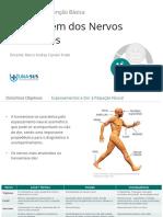 2.Abordagem Dos Nervos Perifericos