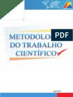 Livrão Metodologia e Pesquisa