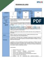Programa Liderazgo de upervición,  Responsabilidad civil y penal