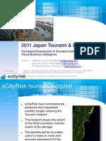 Japan Tsunami Footprint
