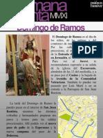 Recomendaciones Domingo de Ramos