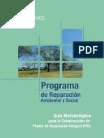 Guía Metodológica para la construcción de PRIs