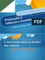 7-OpapeldaEscolanaProtecçãoàInfâncieJuventude2008