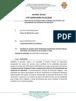 12 INFORME SUPERVISION DE ACTIVIDADES GESTION 2020  PROY FDI_Porvenir