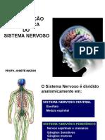 Anatomia Do SN CENTRAL