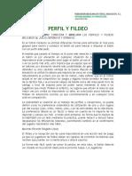 Tema 3 - Perfil y fildeo