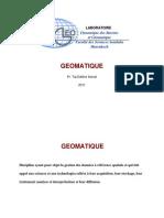 Cours_Sig_Présentation_2009 [Lecture seule]