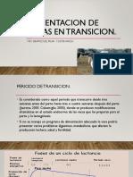 ALIMENTACION DE VACAS EN TRANSICION