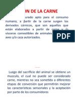 Diapositivas de carne-1