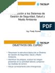 SISTEMAS_INTEGRADOS_DE_GESTION__Febrero_2011_[Modo_de_compatibilidad][1]