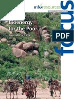 Bioenergy for the Poor