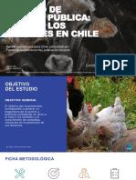 Informe Estudio Trato a Los Animales en Chile Fundacion Vegetarianos Hoy VF