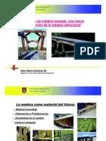Puentes_de_Madera_Tensada_-_Mario_Giuliano[1]