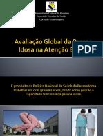 Avaliação Global Idoso_