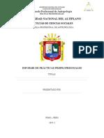 ESQUEMA DE INFOFORME DE PRACTICAS PRE PROFESIONALES u