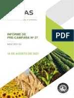 Informe precampaña de maíz 2021/22