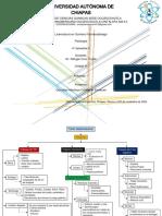 Mapa conceptual TGI