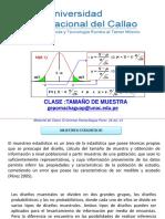TAMAÑO DE MUESTRA 2021