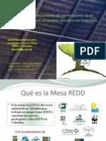 39831865 Mesa REDD Mecanismo de Participacion de La Sociedad Civil