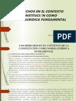 4.-Los Derechos Como Contexto de La Constitucion Como Norma Juridica Fundamental- Sist.gar.Const.-trib.const.princ.doble Dimension