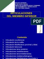 12.) Articulaciones de Miembro Inferior - Prof. Iraima Acuña
