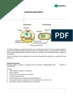 NST-biologia-Tipos de Células e Membrana Plasmática-6bc1b311ea7c84f36ccca7a19e640673