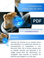 Dominios Del Marketing en Linea