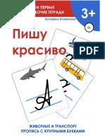 Volkonskaya E Pishu Krasivo Moi Pervyie.a6
