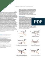 Radiobiology book[001-556][032-044].en.es