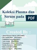 Koleksi Plasma dan Serum pada Sapi