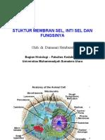 Stuktur Membran Sel, Inti Sel.ppt( Umsu -2010 )